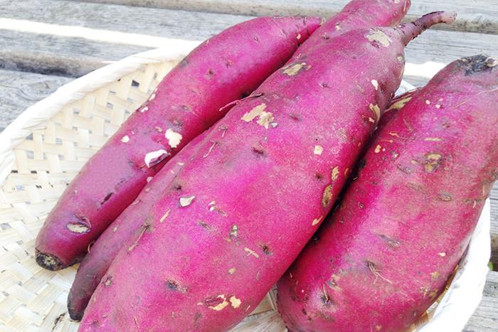野菜宅配便にも同梱されている新井農園さんのサツマイモ