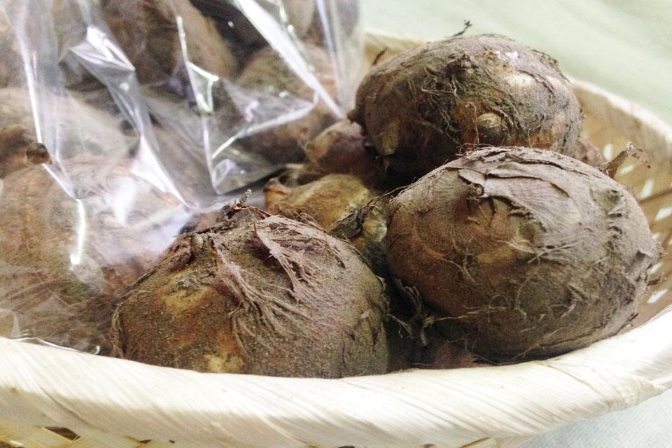 ※大きさにばらつきはありますが、味は本物。柔らかくほのかに甘い、格別な里芋です