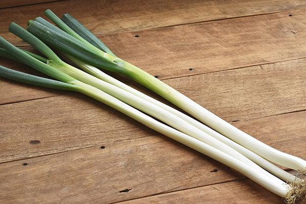 濃い香りとぬめり少なくシャキシャキ食感のネギ「國吉さんの白ねぎ(鳥取県産)」